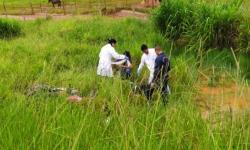 Motociclista é encontrado caído às margens da MS 316