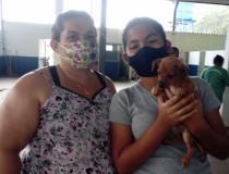 Três cães e um gato do Canil Municipal ganharam novos lares na última semana, 15 a 21