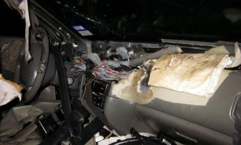 Urso destrói interior de carro nos EUA