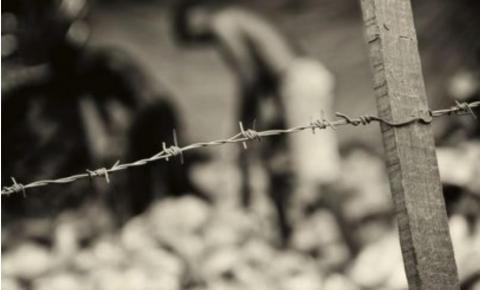 Mais de 50 trabalhadores são resgatados de trabalho escravo em cafezais de Minas Gerais
