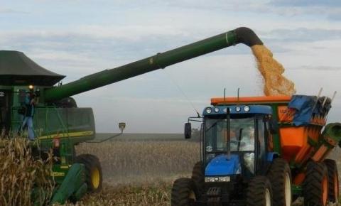 Estiagem Põe Produtores Em Alerta E Recomendação É Cautela Com Milho