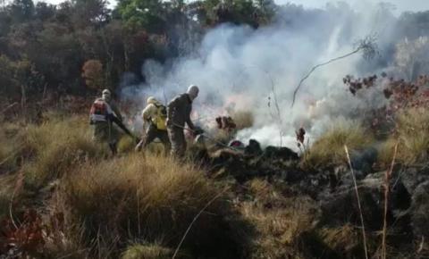 Incêndio de grandes proporções atinge o Parque Nacional das Emas, em Goiás