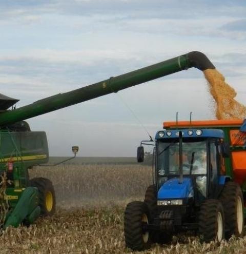 Chapadão do Céu é o 50º maior produtor de grãos do Brasil